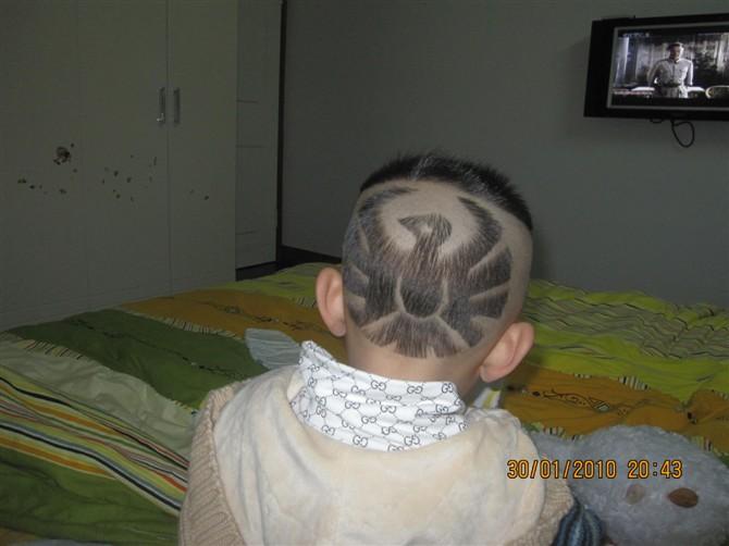 宝宝雕刻发型动物